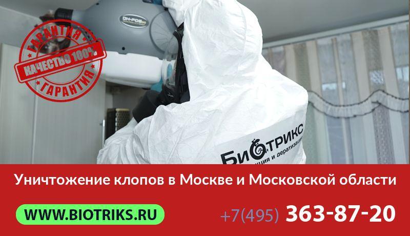 Уничтожение и травля постельных клопов в Москве и Московской области