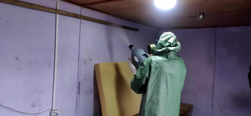Эффективная обработка квартир и домов от клопов в Балашихе недорого от службы Биотрикс с полным уничтожением насекомых